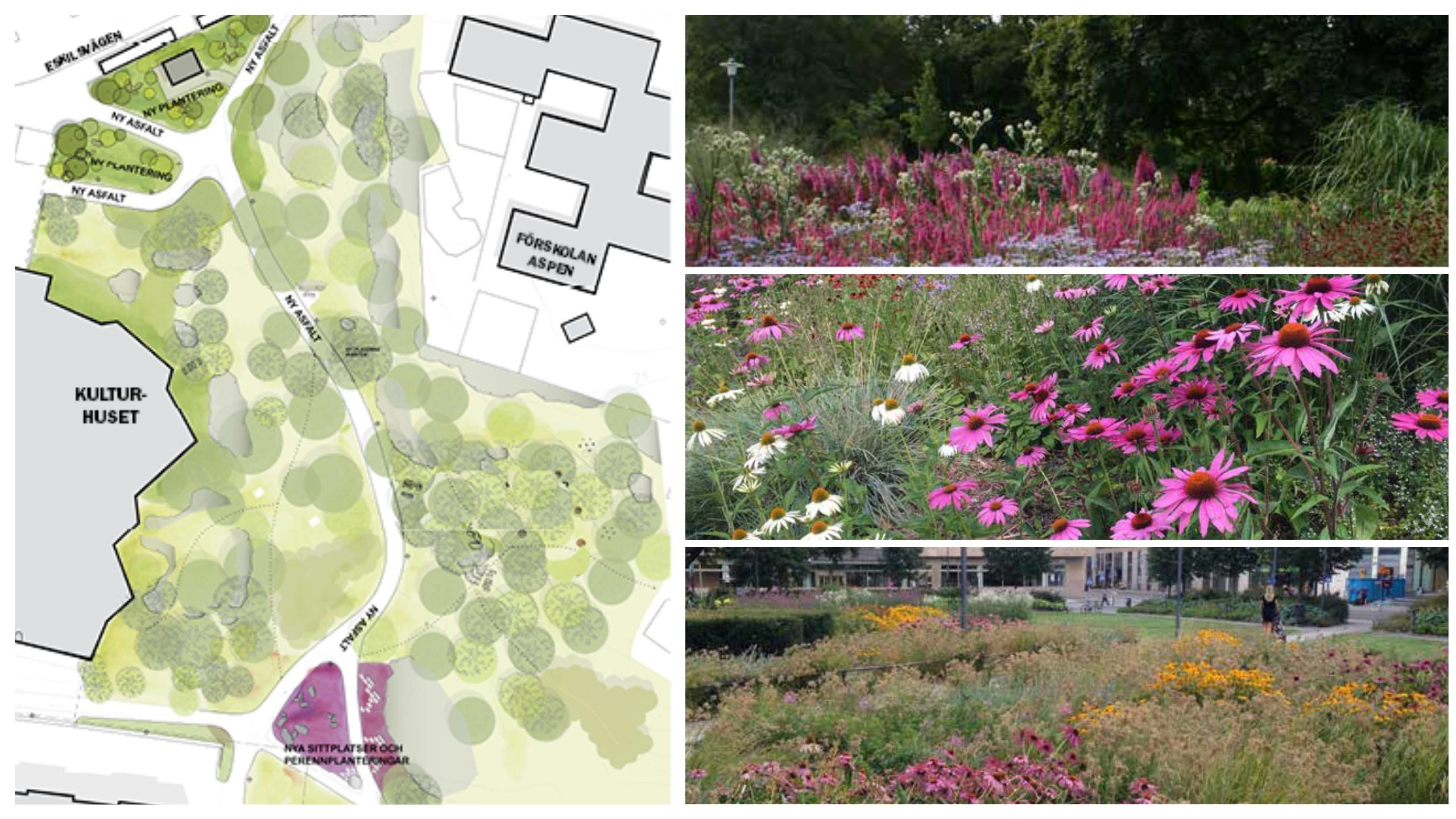 Illustrationsplan över nya parken i Handen - Kulturhusparken