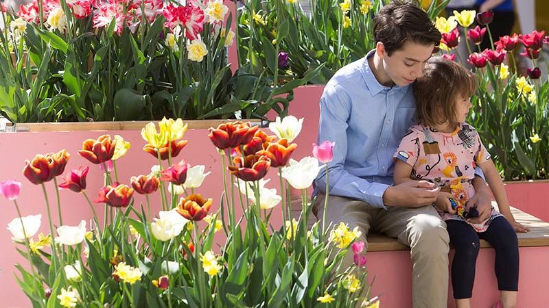 Pojke och flicka sitter på en bänk bland blommande tulpaner